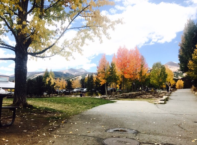 Breckenridge Colorado Fall Beautiful Trees