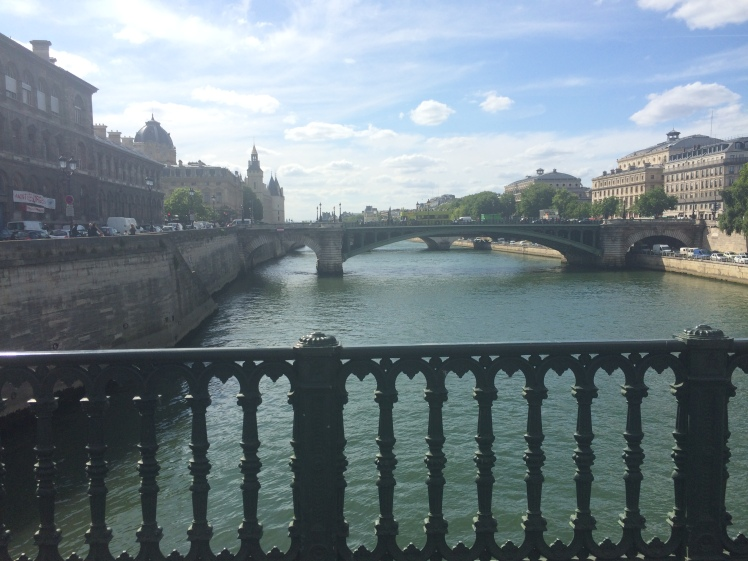 The Seine River in Paris Bridge Beautiful